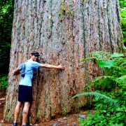 Jared Vilhauer hugging a large cedar.